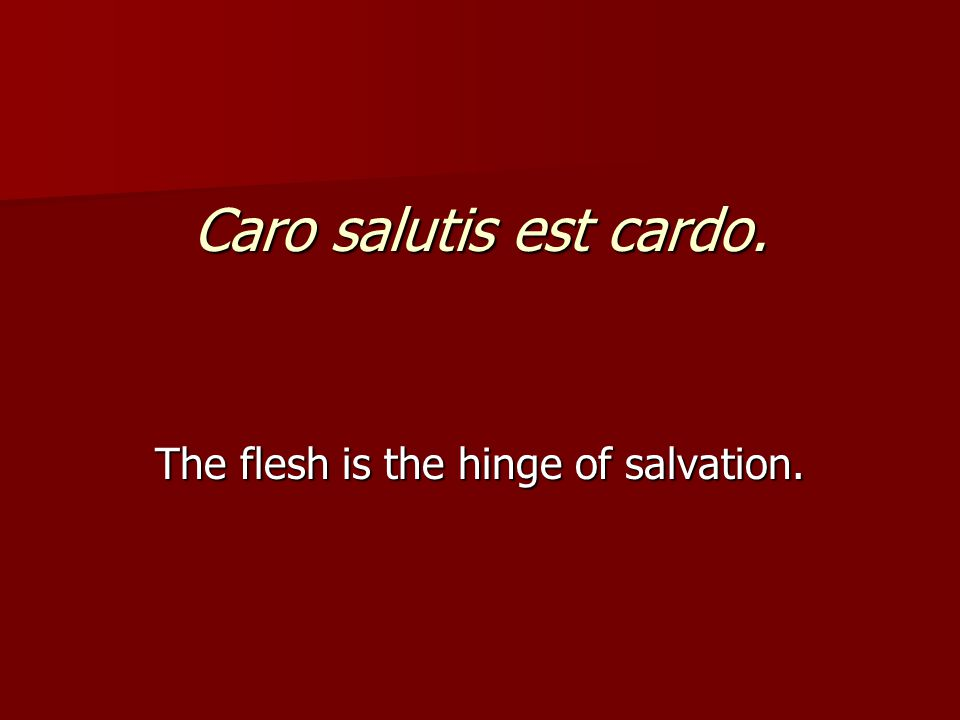 Caro salutis est cardo. The flesh is the hinge of salvation.