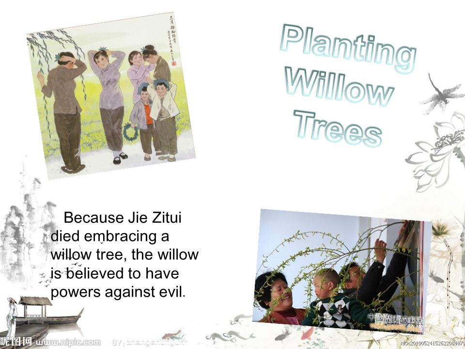 Because Jie Zitui died embracing a willow tree, the willow is believed to have powers against evil.