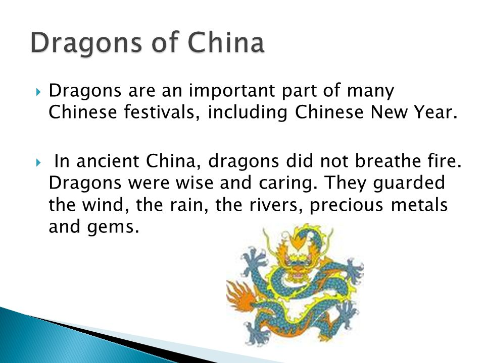  Dragons are an important part of many Chinese festivals, including Chinese New Year.