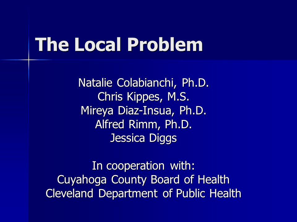 The Local Problem Natalie Colabianchi, Ph.D. Chris Kippes, M.S.