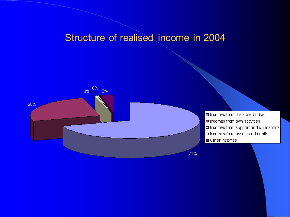 Structure of realised income in 2004