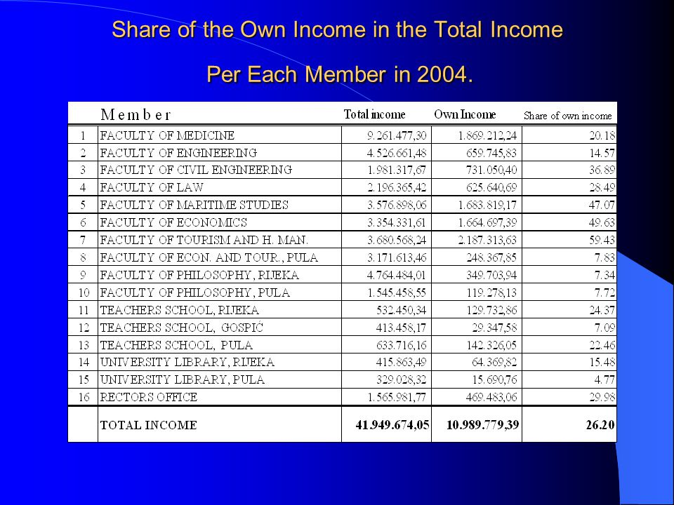 Share of the Own Income in the Total Income Per Each Member in 2004.