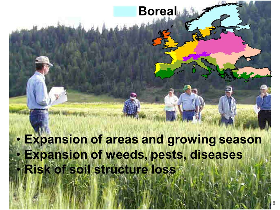 Ana Iglesias - Ecoagua, Zaragoza 24 Septiembre 2008 16 Boreal Expansion of areas and growing season Expansion of weeds, pests, diseases Risk of soil structure loss