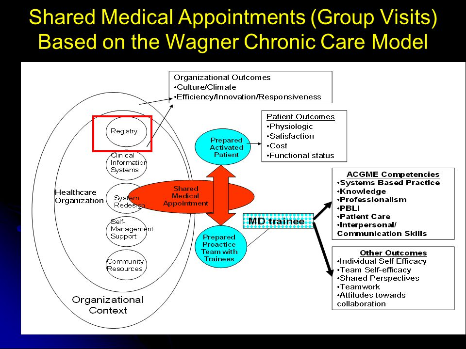 Shared Medical Appointments (Group Visits) Based on the Wagner Chronic Care Model