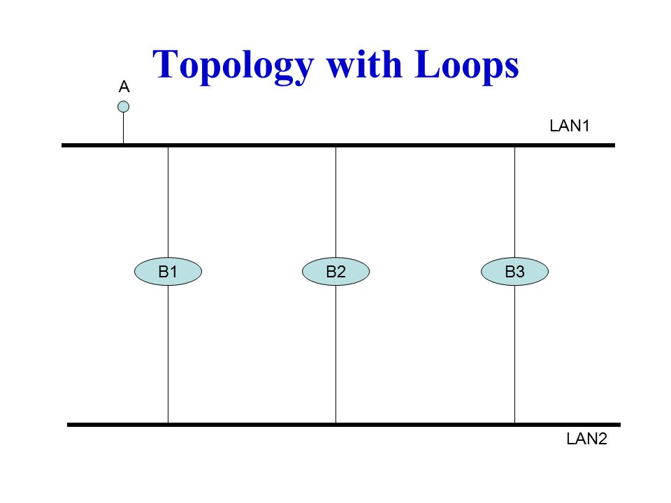 B1B2B3 LAN1 LAN2 A Topology with Loops