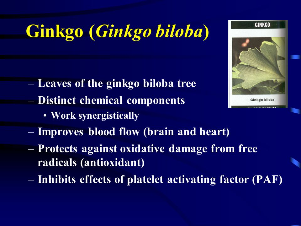 Ginkgo (Ginkgo biloba) –Leaves of the ginkgo biloba tree –Distinct chemical components Work synergistically –Improves blood flow (brain and heart) –Protects against oxidative damage from free radicals (antioxidant) –Inhibits effects of platelet activating factor (PAF)