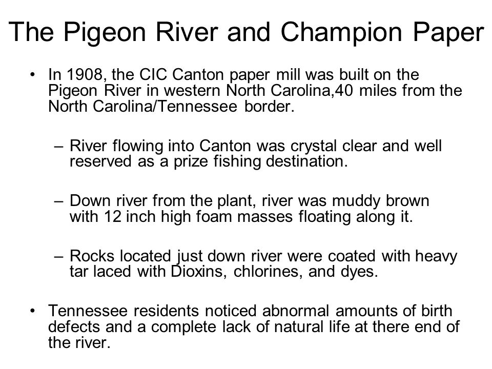 The Pigeon River and Champion Paper In 1908, the CIC Canton paper mill was built on the Pigeon River in western North Carolina,40 miles from the North Carolina/Tennessee border.