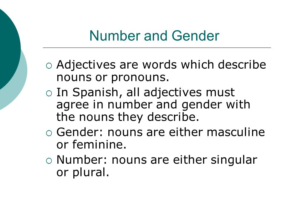 Number and Gender  Adjectives are words which describe nouns or pronouns.