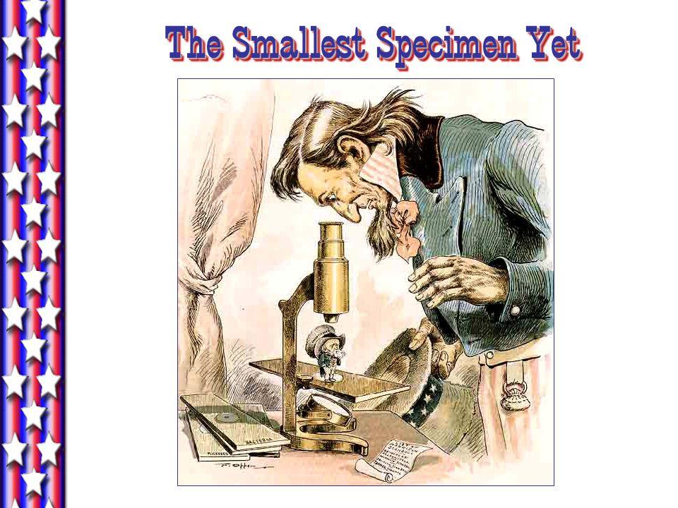 The Smallest Specimen Yet