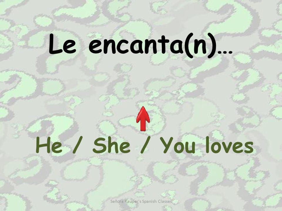 A mi (no) me gusta(n) … I (don't) like… Señora Kauper s Spanish Classes