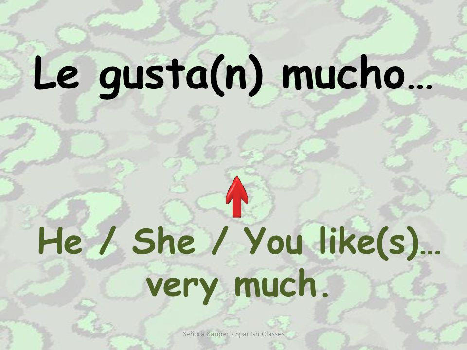 Le encanta(n)… He / She / You loves Señora Kauper s Spanish Classes
