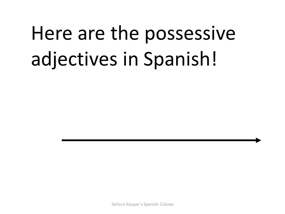 """Posessive Adjectives It like saying """"my dog, your house, his notebook, etc."""" Señora Kauper's Spanish Classes"""