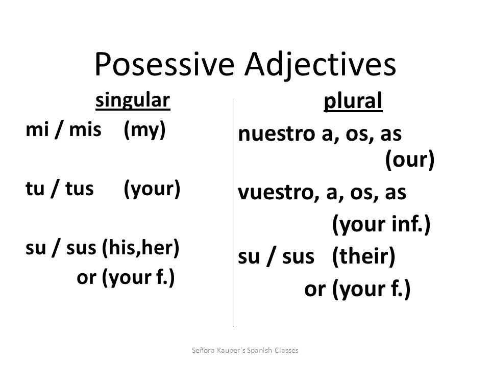 Here are the possessive adjectives in Spanish! Señora Kauper s Spanish Classes