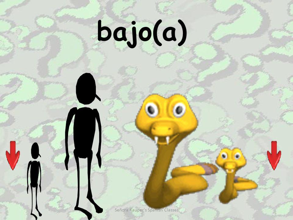 alto(a) Señora Kauper s Spanish Classes