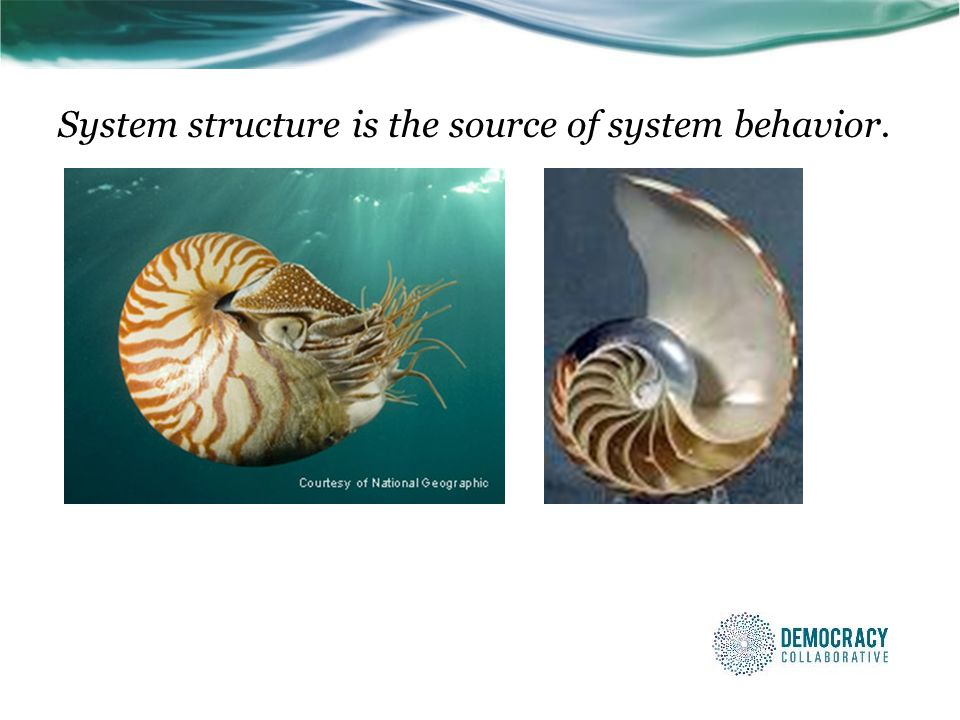 System structure is the source of system behavior.