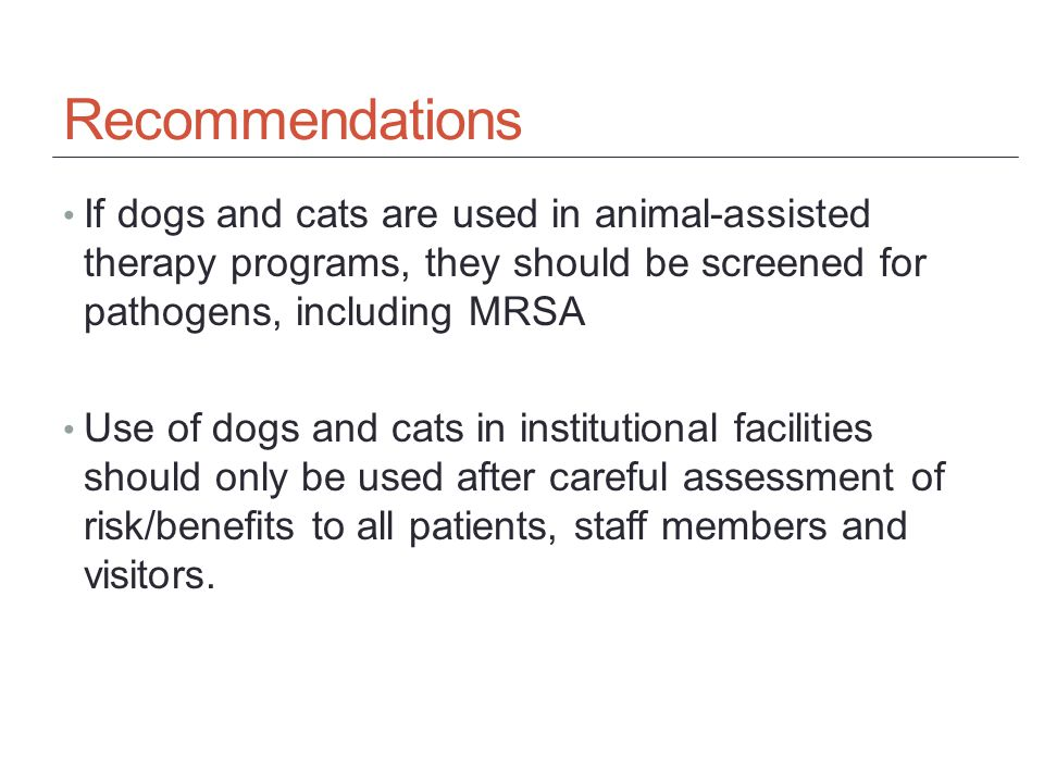Recommendations If dogs and cats are used in animal-assisted therapy programs, they should be screened for pathogens, including MRSA Use of dogs and cats in institutional facilities should only be used after careful assessment of risk/benefits to all patients, staff members and visitors.