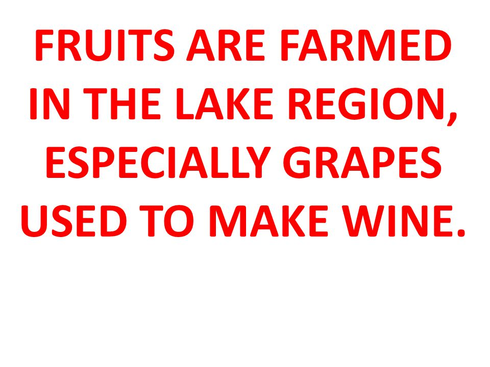 FRUITS ARE FARMED IN THE LAKE REGION, ESPECIALLY GRAPES USED TO MAKE WINE.