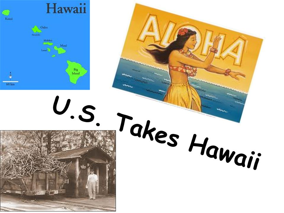 Hawaii's Economy  75% of wealth from sugar plantations / open society multi-nation trade post  Some Plantations owned by Americans  Contract Labor imported from Japan/China