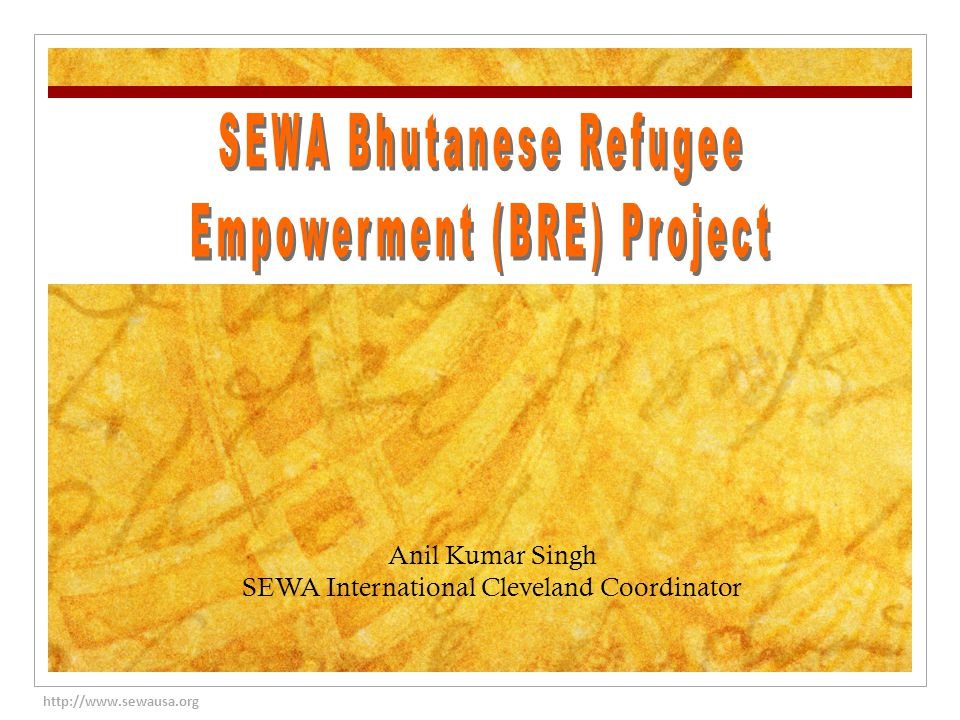 http://www.sewausa.org Anil Kumar Singh SEWA International Cleveland Coordinator