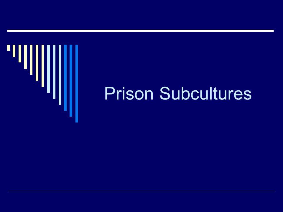 Prison Subcultures