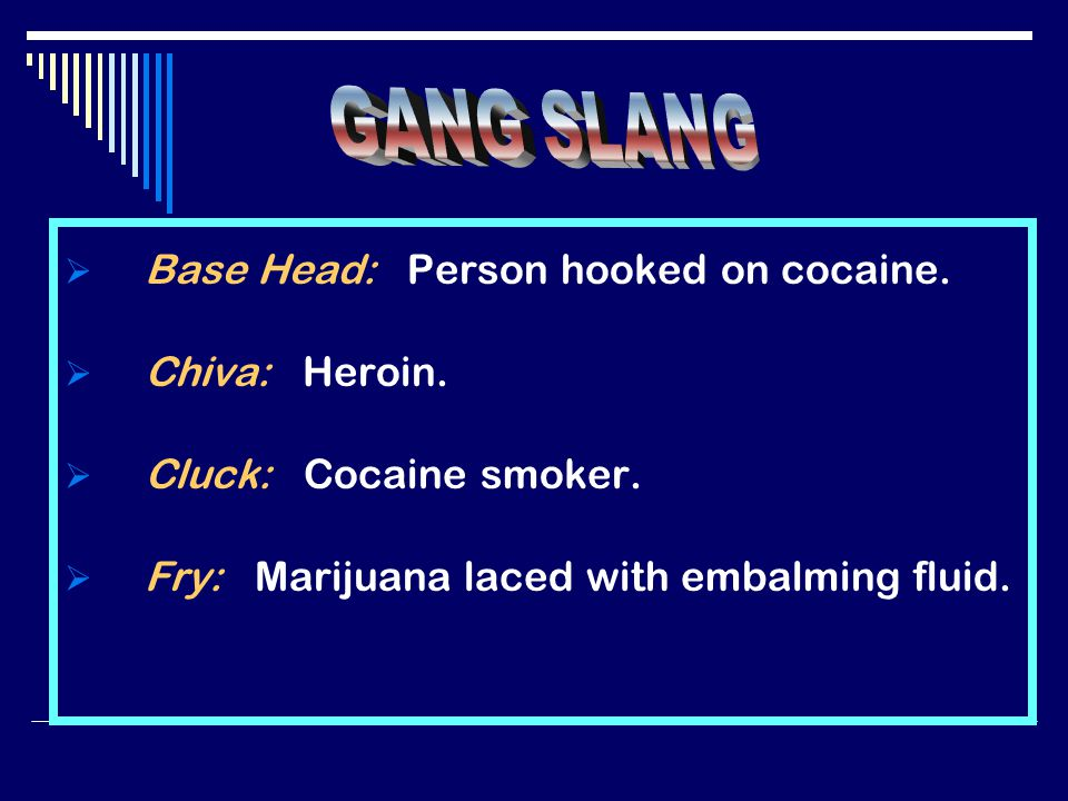  Base Head: Person hooked on cocaine.  Chiva: Heroin.
