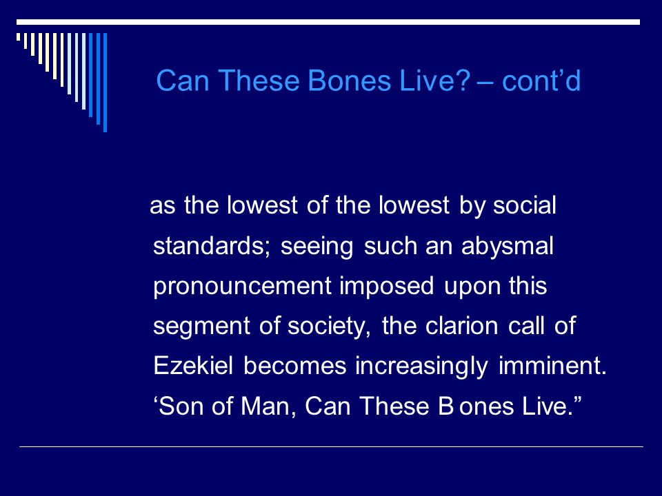 Can These Bones Live.