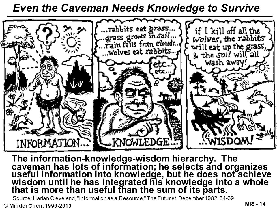 MIS - 14 © Minder Chen, 1996-2013 Even the Caveman Needs Knowledge to Survive The information-knowledge-wisdom hierarchy. The caveman has lots of info