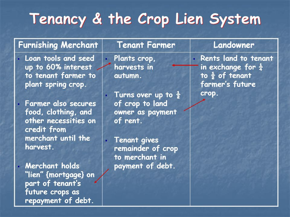Tenancy & the Crop Lien System Furnishing MerchantTenant FarmerLandowner  Loan tools and seed up to 60% interest to tenant farmer to plant spring crop.
