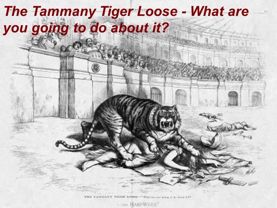The Tammany Tiger Loose - What are you going to do about it