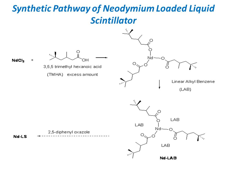 Synthetic Pathway of Neodymium Loaded Liquid Scintillator