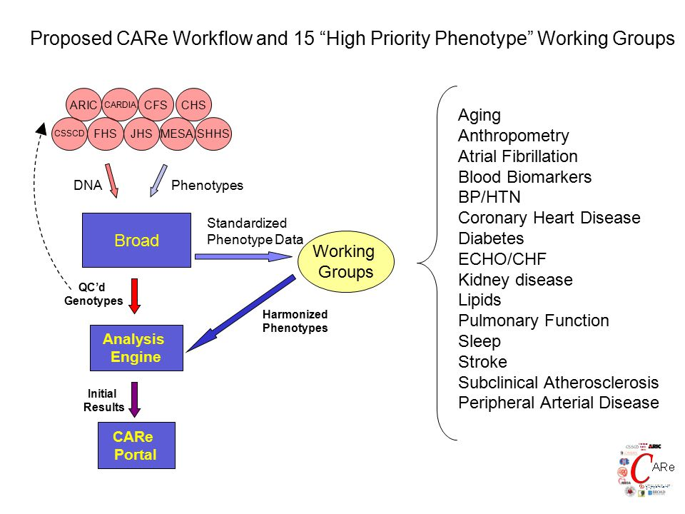 Proposed CARe Workflow and 15 High Priority Phenotype Working Groups CHS ARIC CARDIA CFS JHS CSSCD FHS SHHSMESA DNAPhenotypes QC'd Genotypes Broad Standardized Phenotype Data Harmonized Phenotypes Analysis Engine Working Groups Initial Results CARe Portal Aging Anthropometry Atrial Fibrillation Blood Biomarkers BP/HTN Coronary Heart Disease Diabetes ECHO/CHF Kidney disease Lipids Pulmonary Function Sleep Stroke Subclinical Atherosclerosis Peripheral Arterial Disease