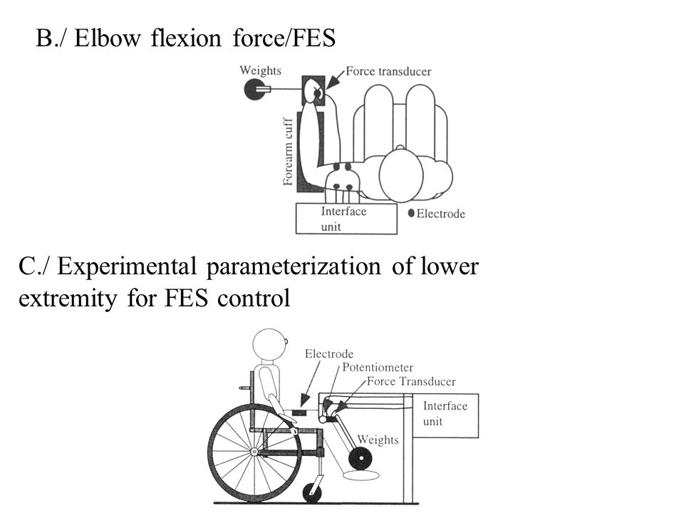B./ Elbow flexion force/FES C./ Experimental parameterization of lower extremity for FES control
