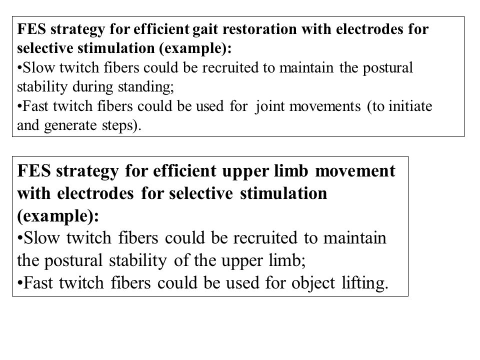 FES strategy for efficient gait restoration with electrodes for selective stimulation (example): Slow twitch fibers could be recruited to maintain the postural stability during standing; Fast twitch fibers could be used for joint movements (to initiate and generate steps).