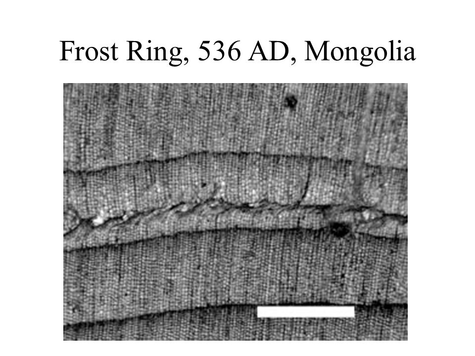Frost Ring, 536 AD, Mongolia