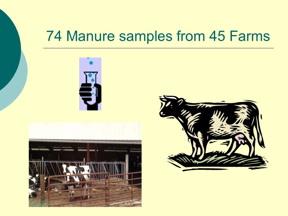 74 Manure samples from 45 Farms