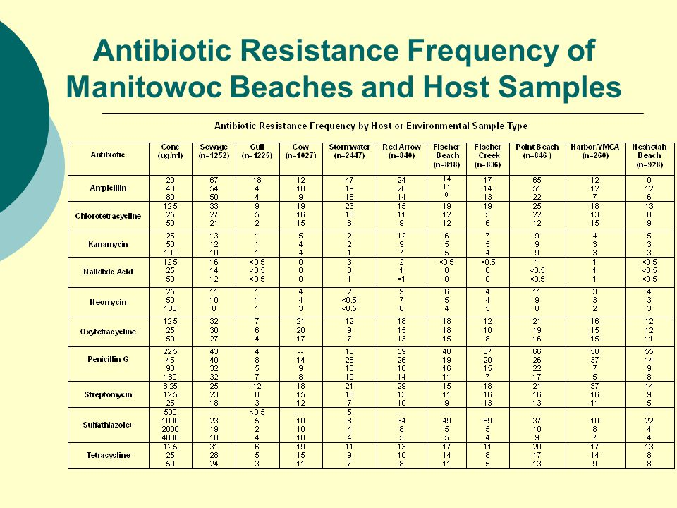 Antibiotic Resistance Frequency of Manitowoc Beaches and Host Samples