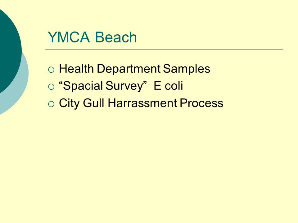 YMCA Beach  Health Department Samples  Spacial Survey E coli  City Gull Harrassment Process