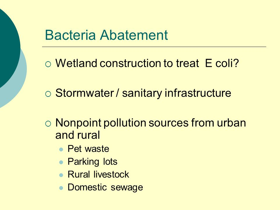 Bacteria Abatement  Wetland construction to treat E coli.