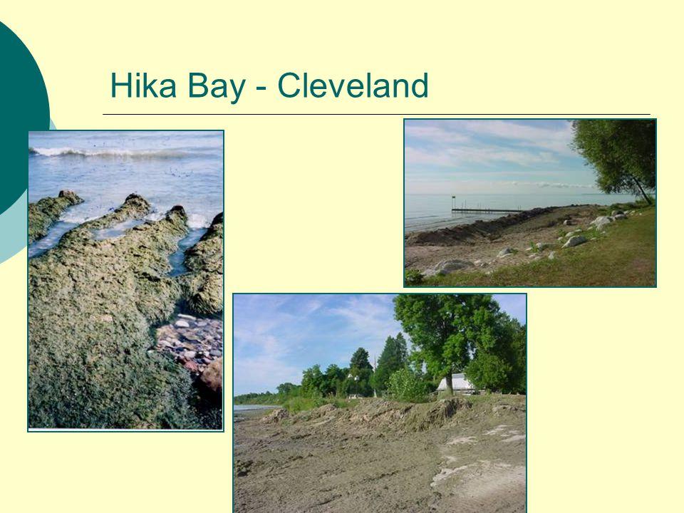 Hika Bay - Cleveland
