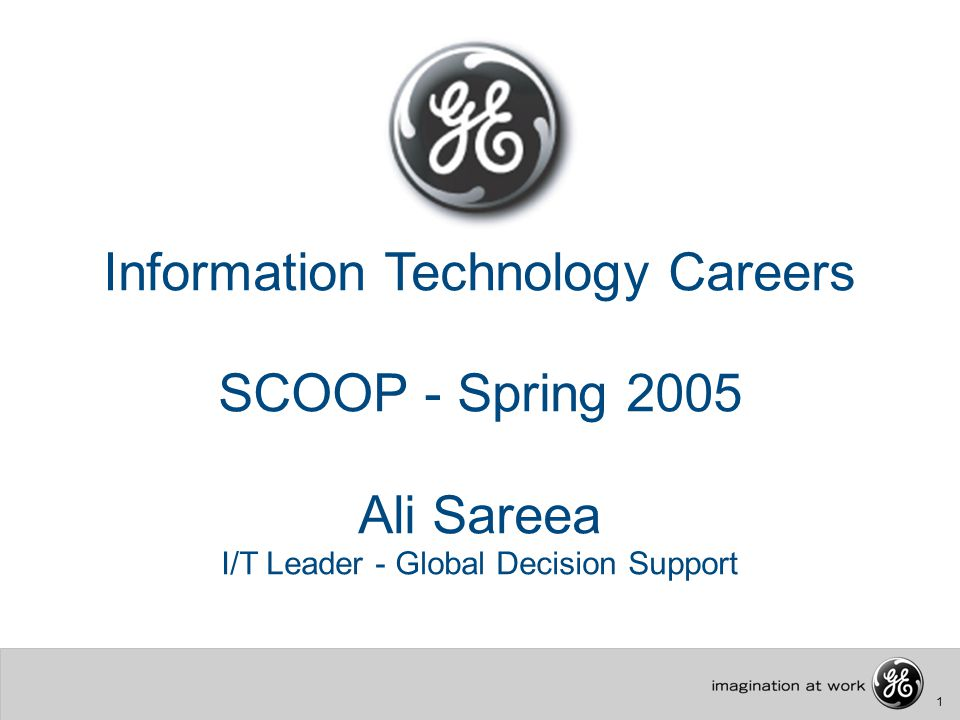 1 Information Technology Careers SCOOP - Spring 2005 Ali Sareea I/T Leader - Global Decision Support