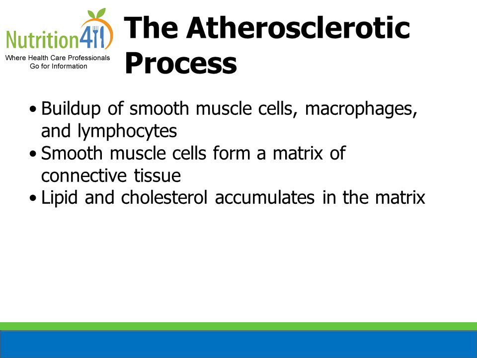 The Atherosclerotic Process Buildup of smooth muscle cells, macrophages, and lymphocytes Smooth muscle cells form a matrix of connective tissue Lipid and cholesterol accumulates in the matrix