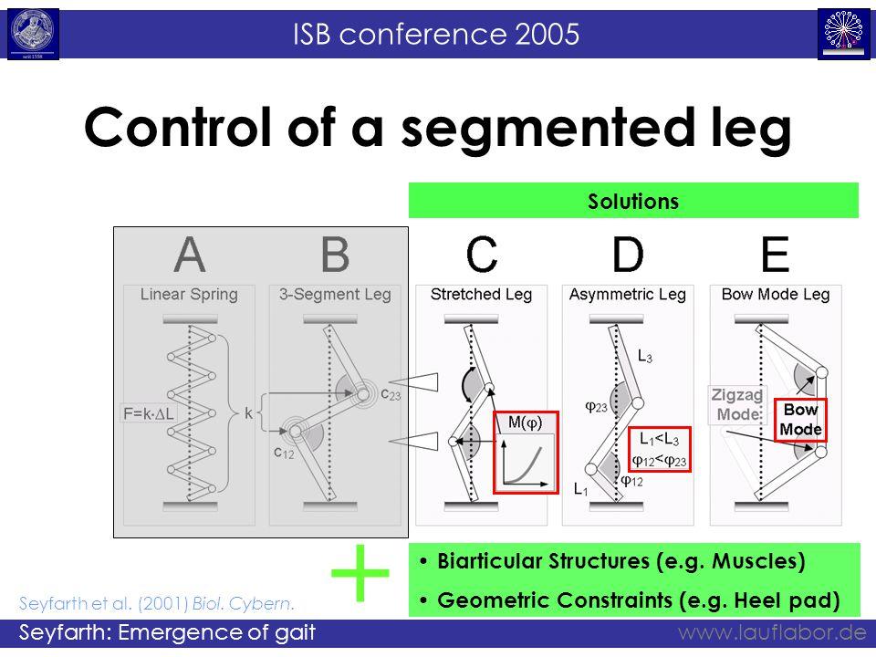 ISB conference 2005 Seyfarth: Emergence of gaitwww.lauflabor.de Control of a segmented leg Solutions Seyfarth et al. (2001) Biol. Cybern. Biarticular