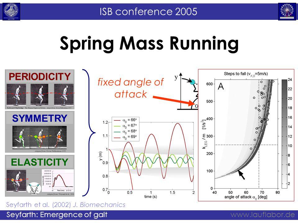 ISB conference 2005 Seyfarth: Emergence of gaitwww.lauflabor.de Spring Mass Running fixed angle of attack fixed leg stiffness Seyfarth et al. (2002) J