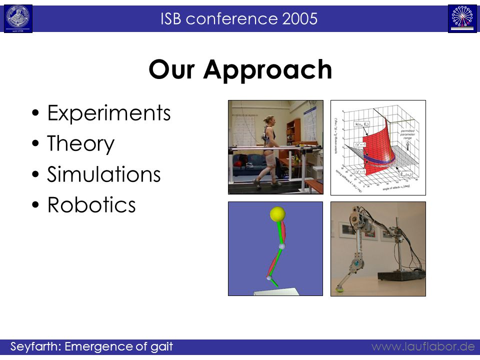 ISB conference 2005 Seyfarth: Emergence of gaitwww.lauflabor.de Our Approach Experiments Theory Simulations Robotics