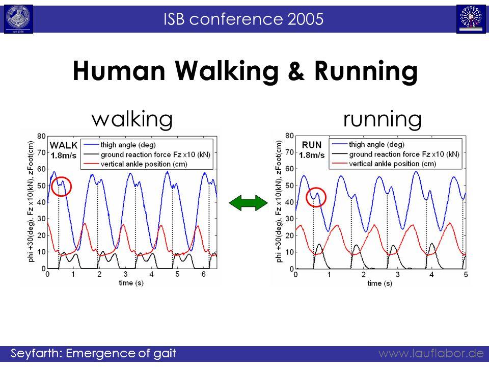 ISB conference 2005 Seyfarth: Emergence of gaitwww.lauflabor.de Human Walking & Running walkingrunning