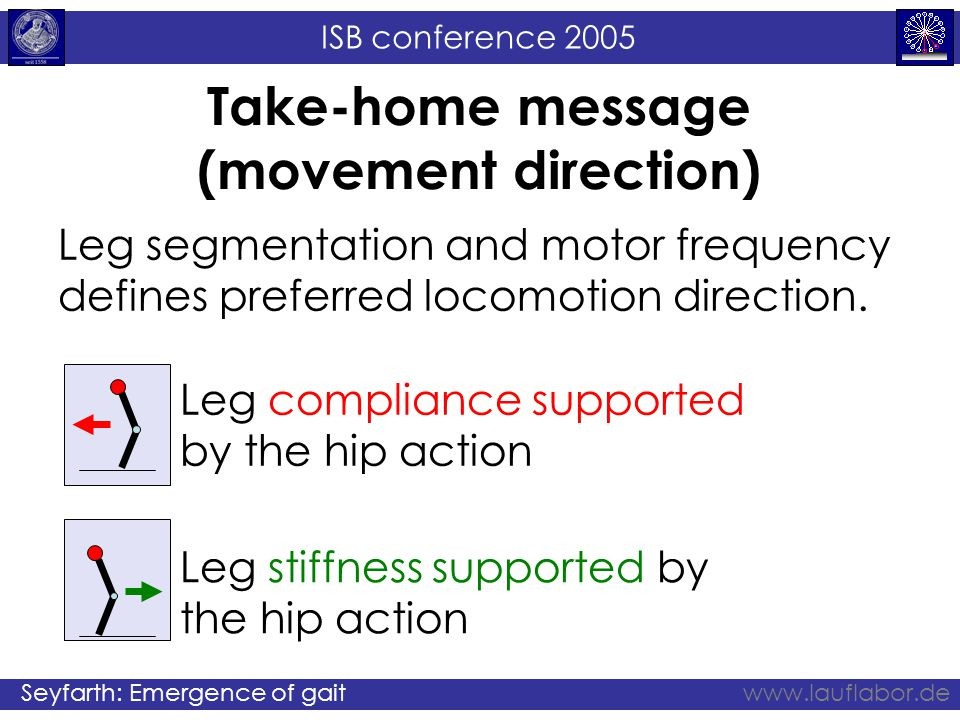 ISB conference 2005 Seyfarth: Emergence of gaitwww.lauflabor.de Take-home message (movement direction) Leg segmentation and motor frequency defines preferred locomotion direction.