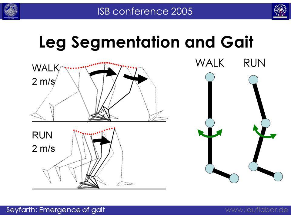 ISB conference 2005 Seyfarth: Emergence of gaitwww.lauflabor.de Leg Segmentation and Gait WALKRUN