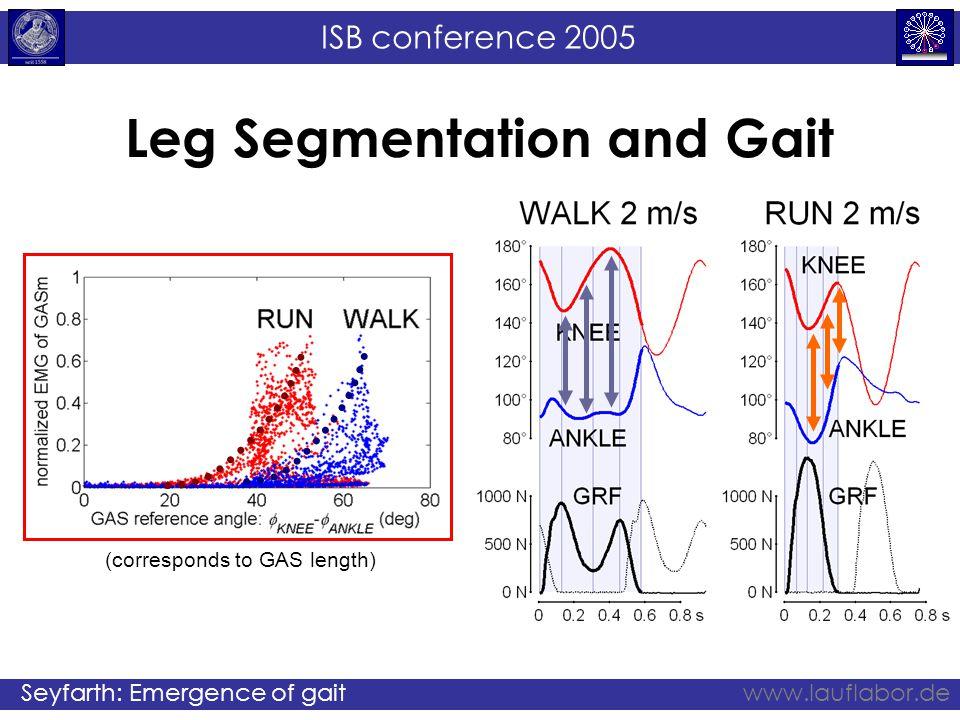 ISB conference 2005 Seyfarth: Emergence of gaitwww.lauflabor.de Leg Segmentation and Gait (corresponds to GAS length)