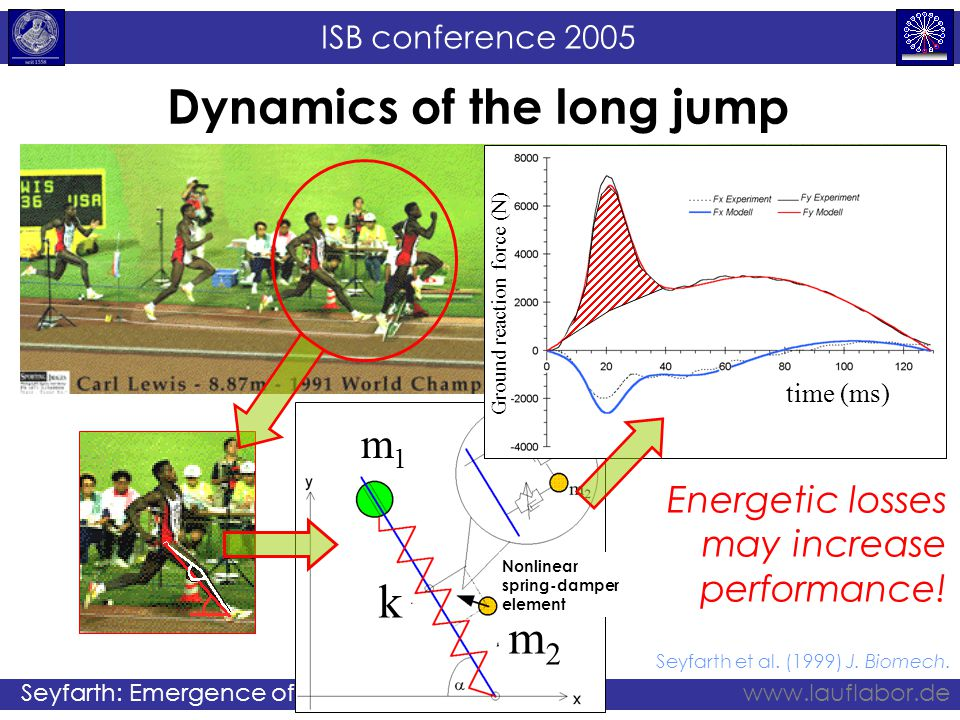 ISB conference 2005 Seyfarth: Emergence of gaitwww.lauflabor.de Hip Control