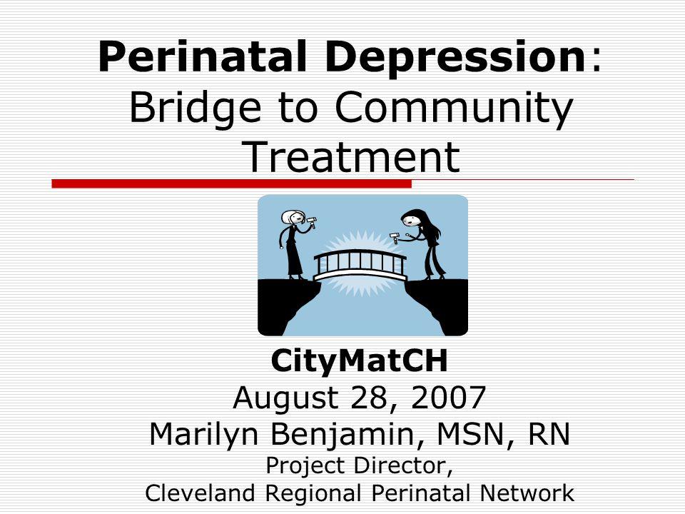 Perinatal Depression: Bridge to Community Treatment CityMatCH August 28, 2007 Marilyn Benjamin, MSN, RN Project Director, Cleveland Regional Perinatal